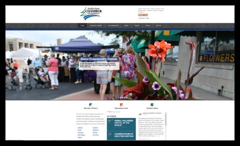 anoka area chamber home page